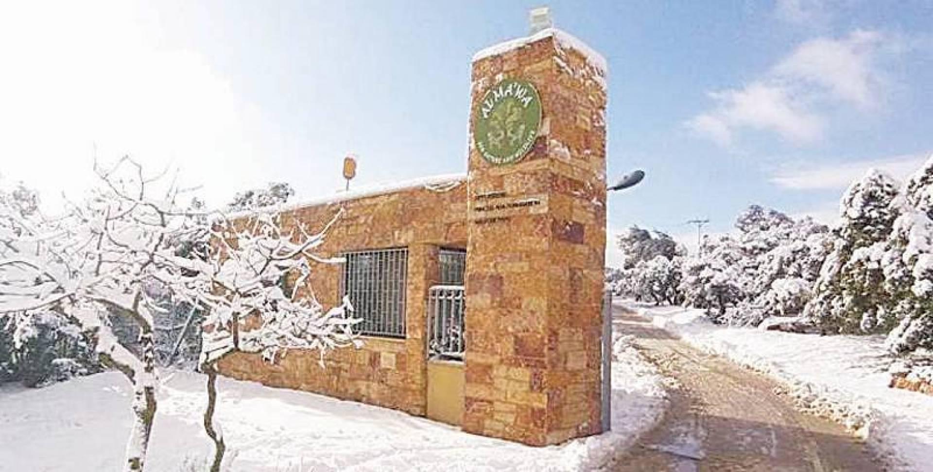 محمية أردنية تحتضن الحيوانات المفترسة من مناطق النزاعات