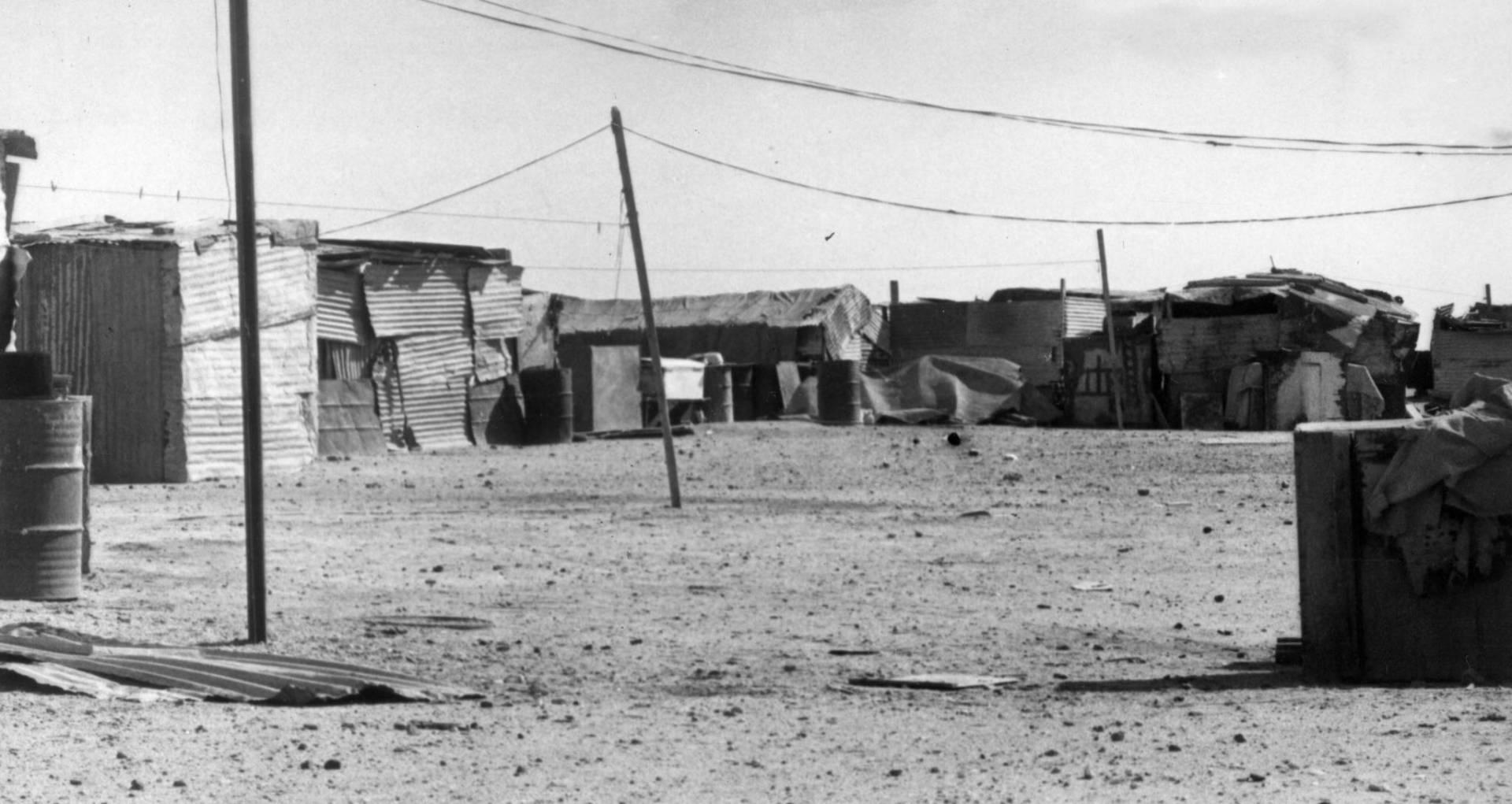 مساكن من العشيش.. صورة أرشيفية