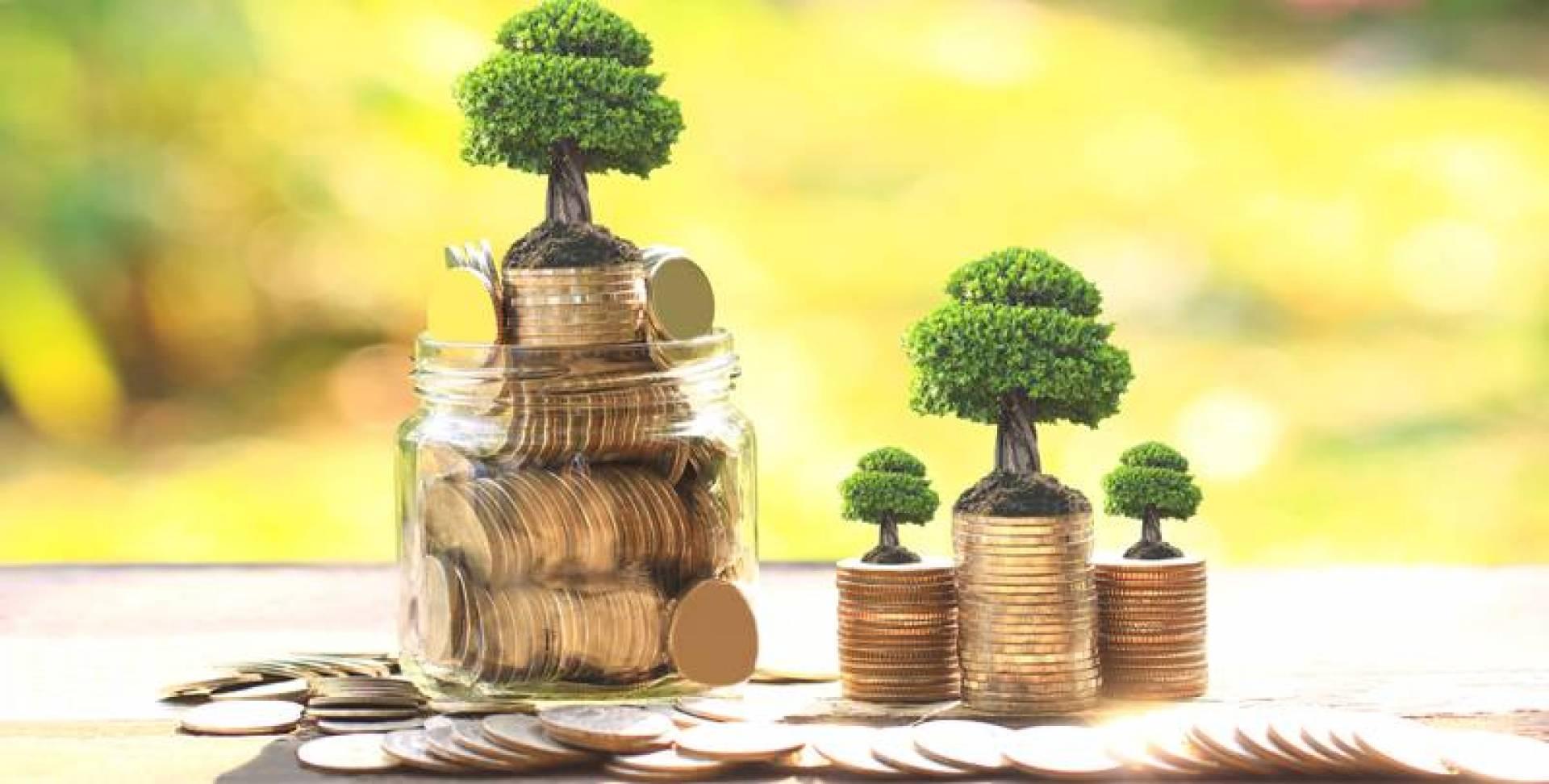 صناديق الودائع والسندات تنافس «المستثمرة» في الأسهم المحلية