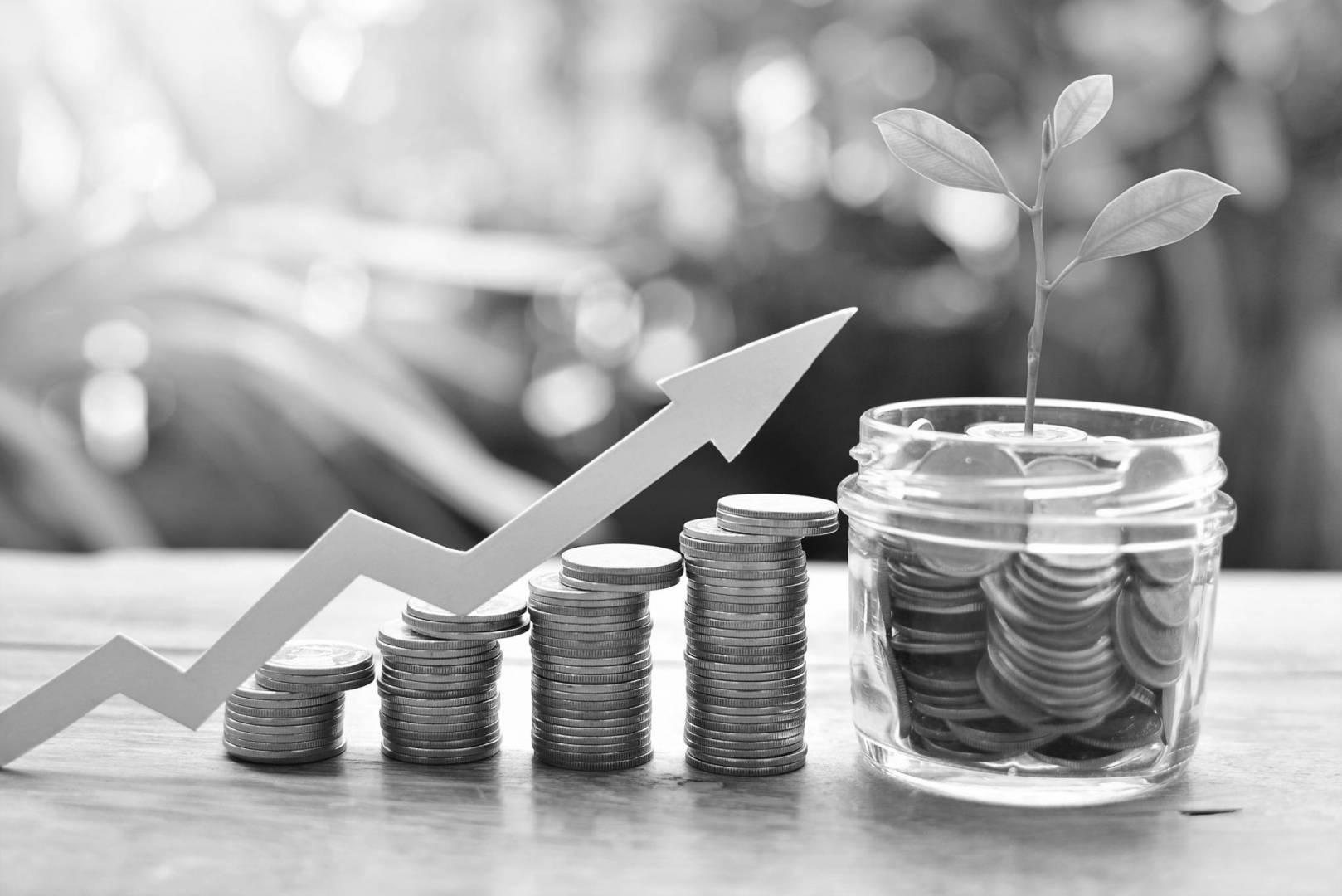 هكذا حققت صناديق الاستثمار أرباحاً مع تمسكها بـ«الاستدامة»