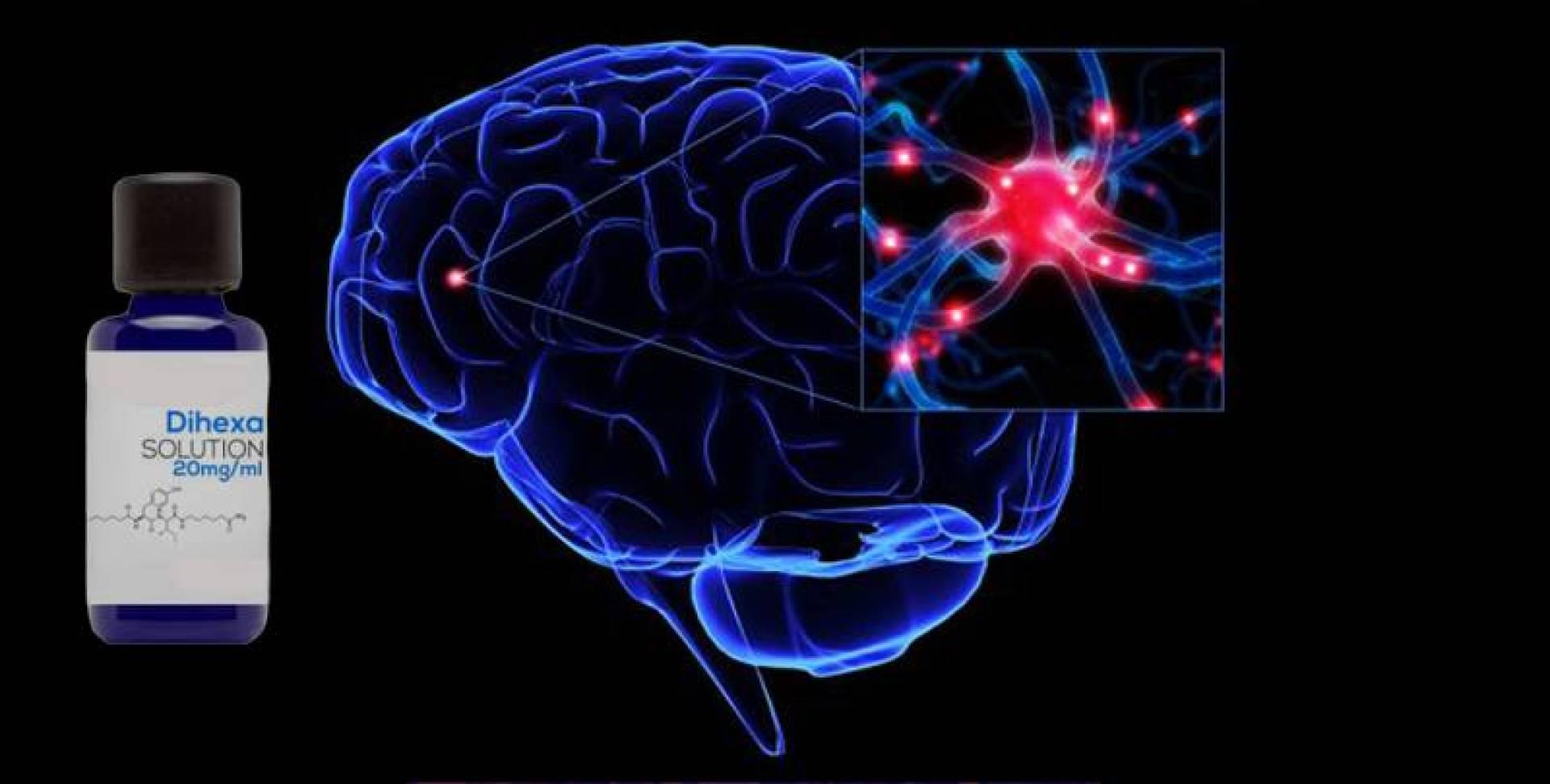 «Dihexa».. كريم طبي يساعد في تعلم اللغات ويعالج فقدان الذاكرة!