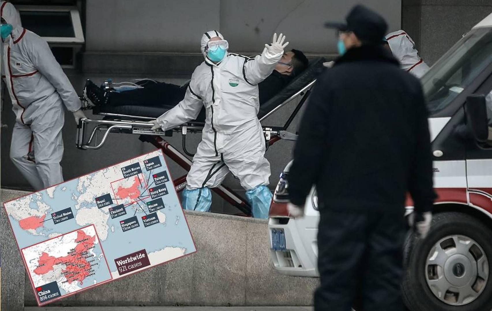 «ديلي ميل»: كورونا قد يقتل 65 مليون شخص.. خلال عام ونصف
