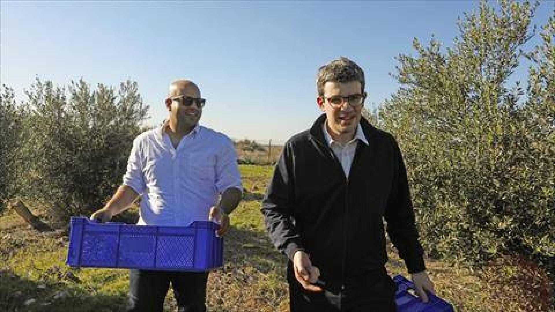 «زيت السلام».. بارقة أمل اقتصادية لتوحيد قبرص