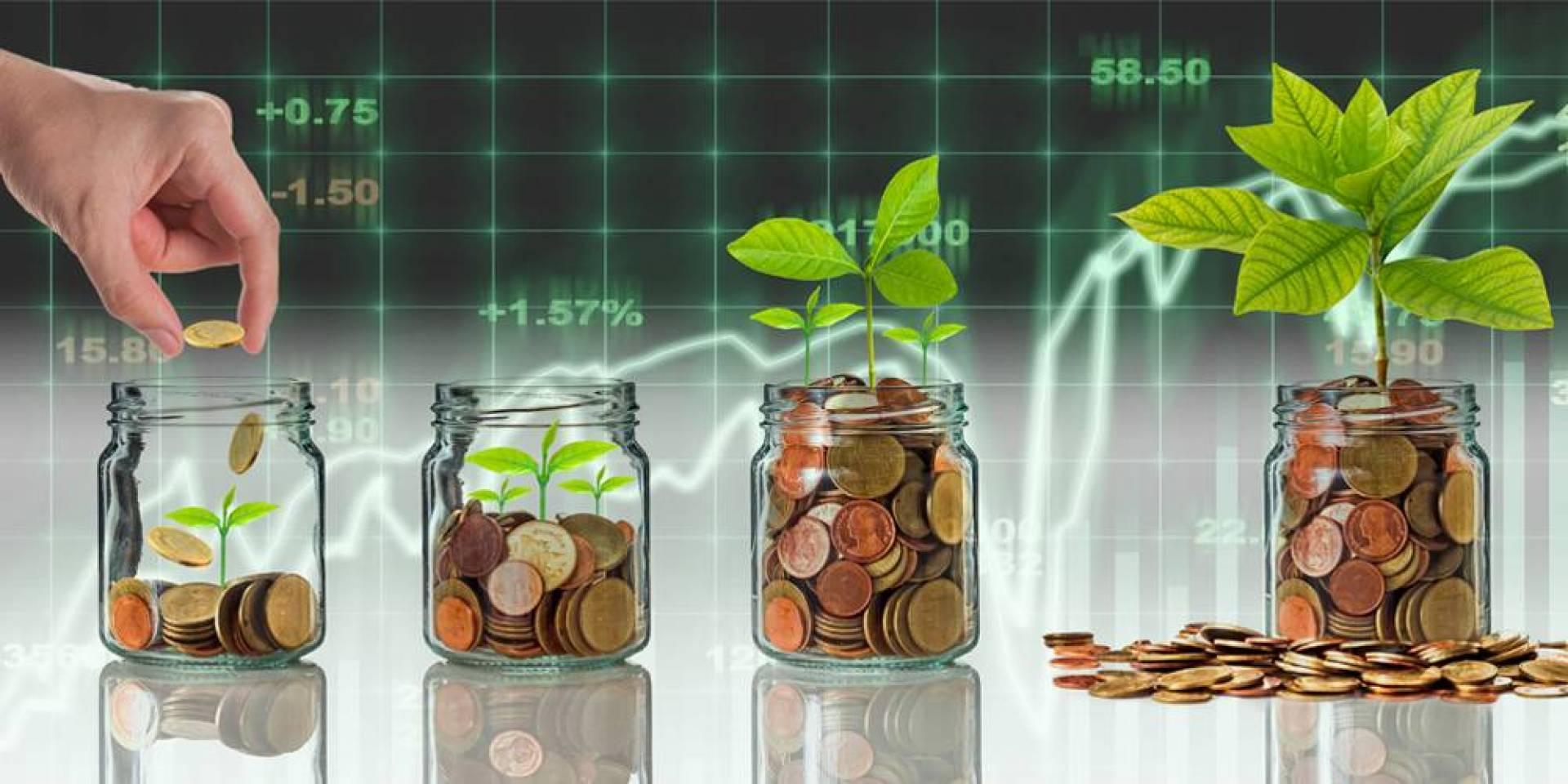الحرية المالية عبر سوق الأسهم